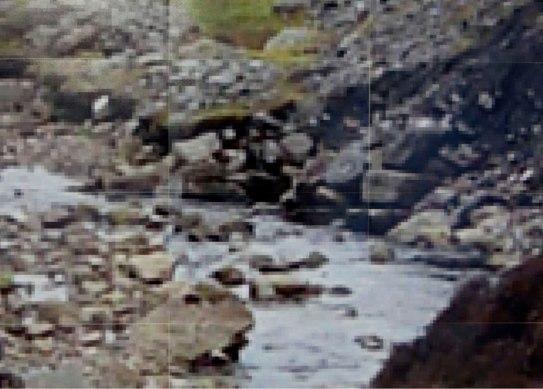close-up documentation of Landslideshow