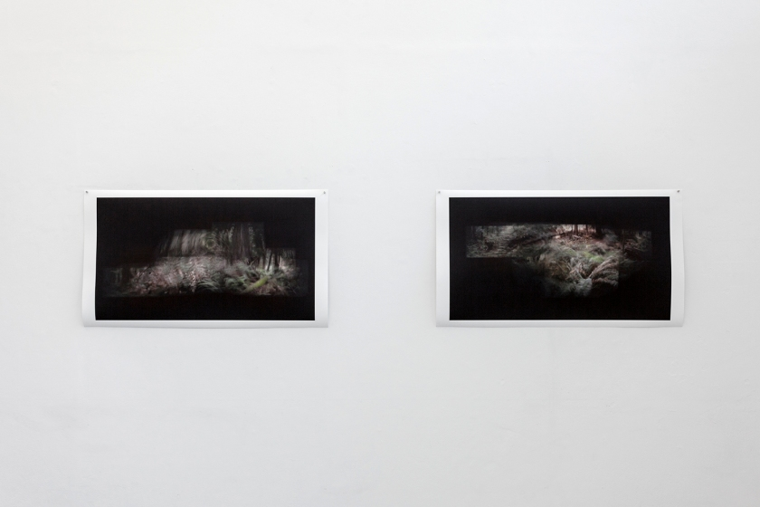 Slowing down the light (install shot)